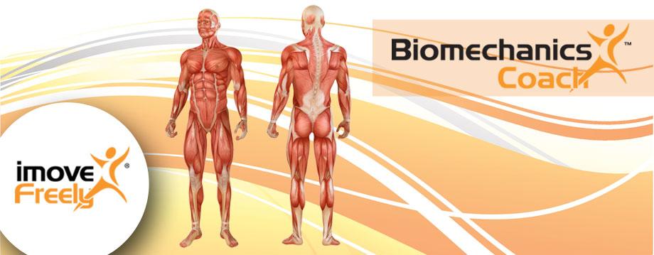 biomechanics_banner
